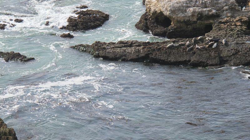 Ocean drama