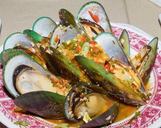 Mussels close