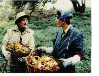 Julia Child Michael Hutchings Chanterelles copy 2
